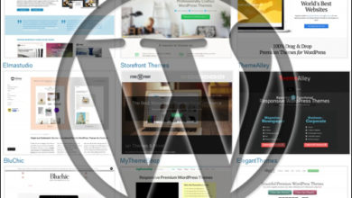 Photo of How to choose the Best WordPress Themes for Your Website