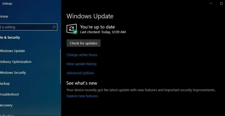 Windows 10 version 1903 build 18362 295 available with