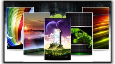 Photo of Ringtones & Wallpapers Which are the best applications for you