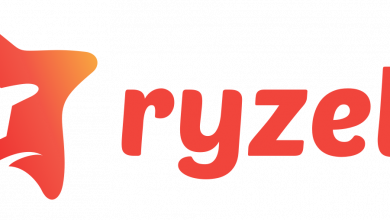 Photo of What is Ryzely – Unlimited Social Media Manageme?