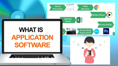 Photo of Everything You Need to Know About Application Software