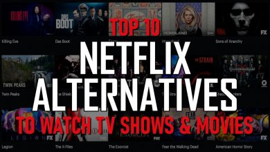 Photo of Best 10 Alternatives to Netflix in 2020