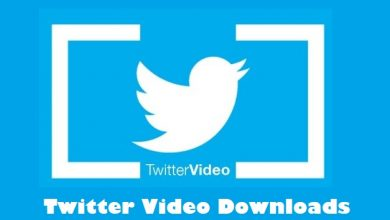 Photo of Twitter Video Downloads