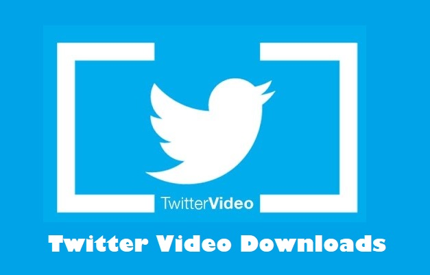 Twitter Video Downloads