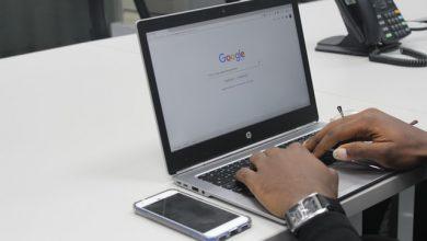 Photo of Top 10 Best Torrent Sites